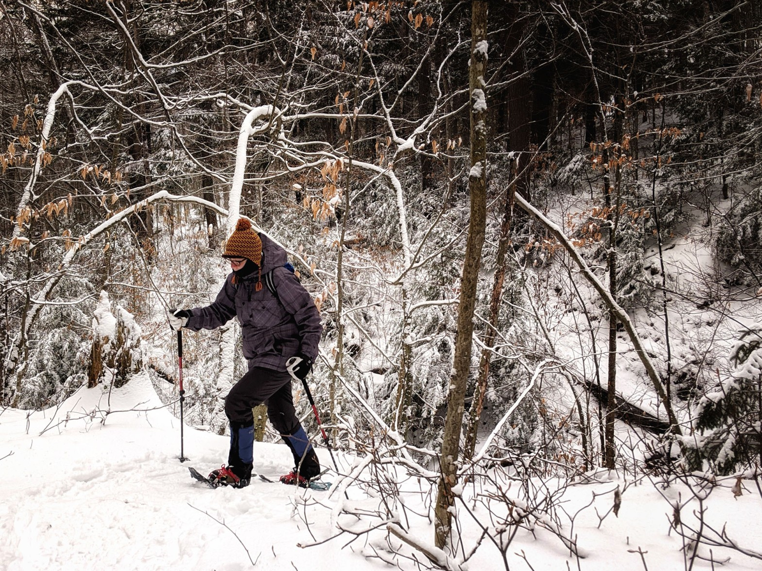 Snowshoeing through the woods
