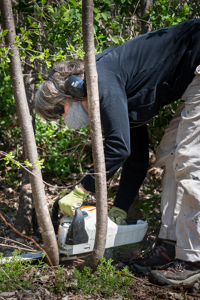 Woman chainsaws brush at Park